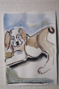 kynos-akvarel-slider